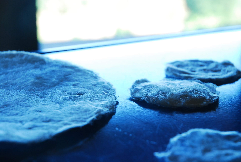 真綿パック作りに見る繭の鮮度