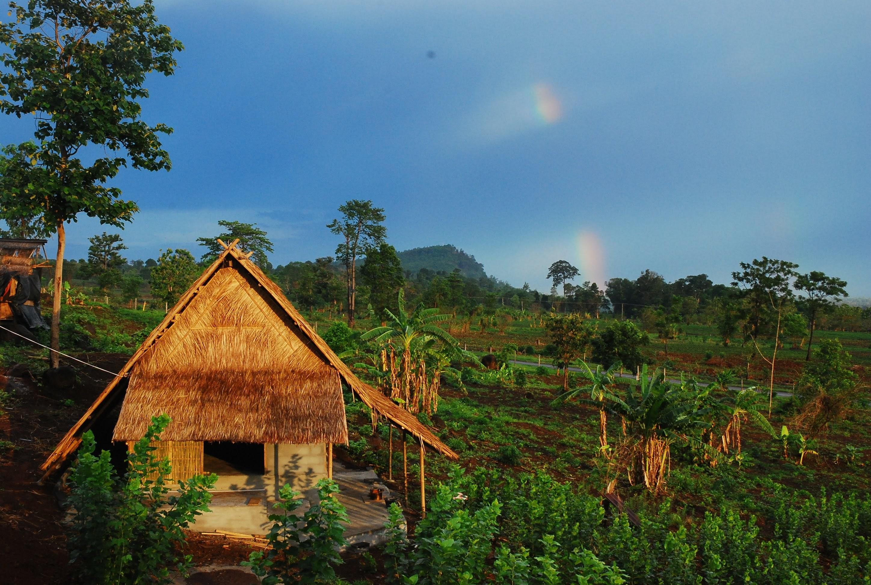 蚕室と農園