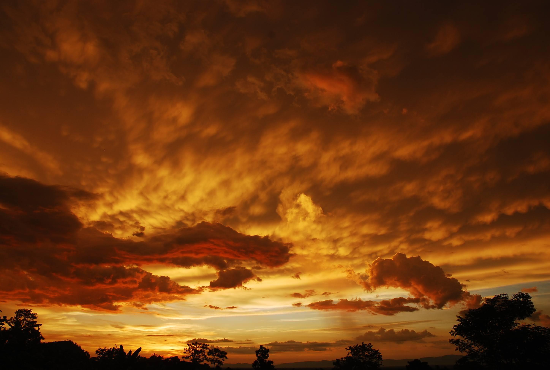 黄金に輝く夕暮れ