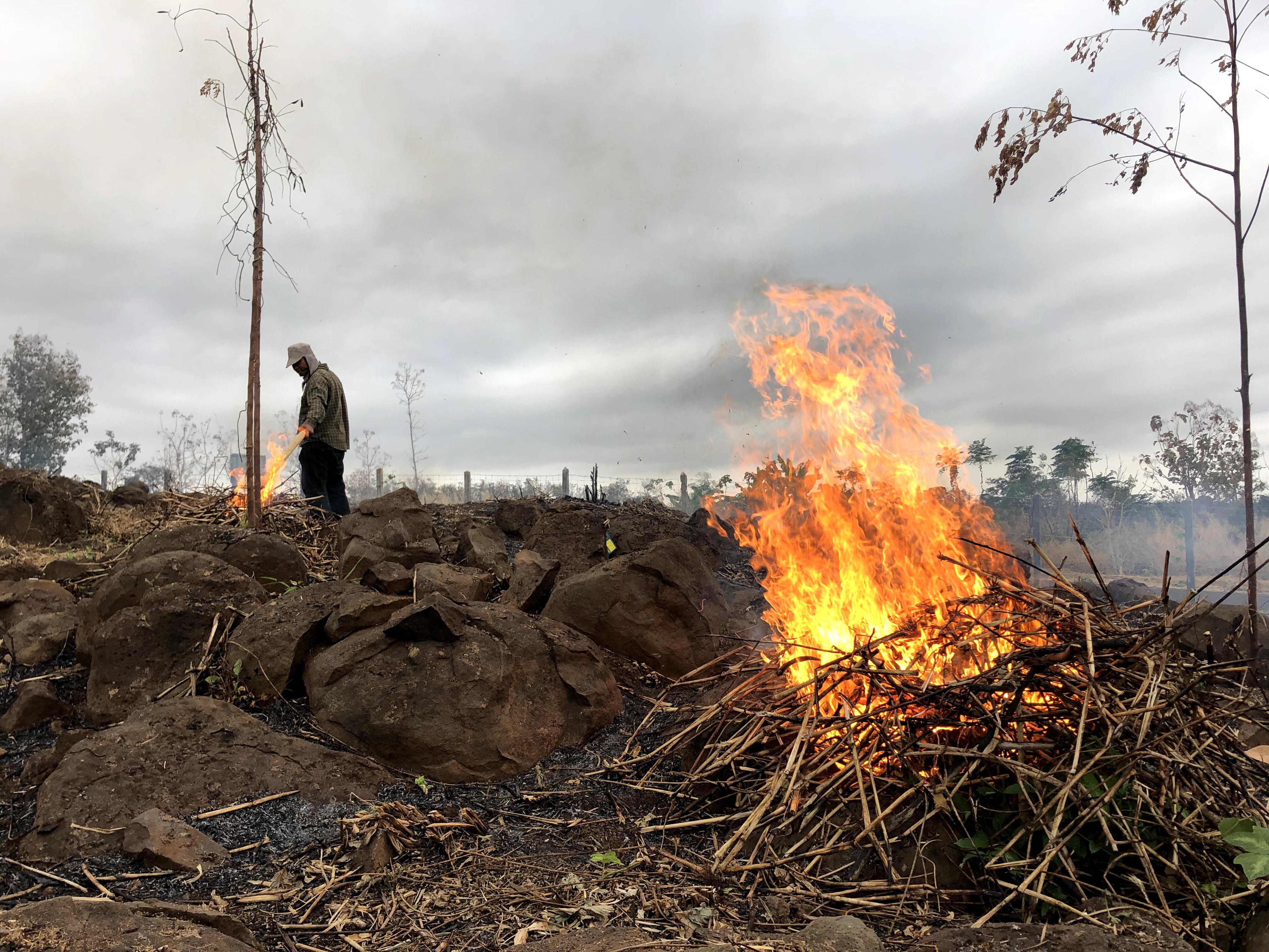 農場野焼き開始