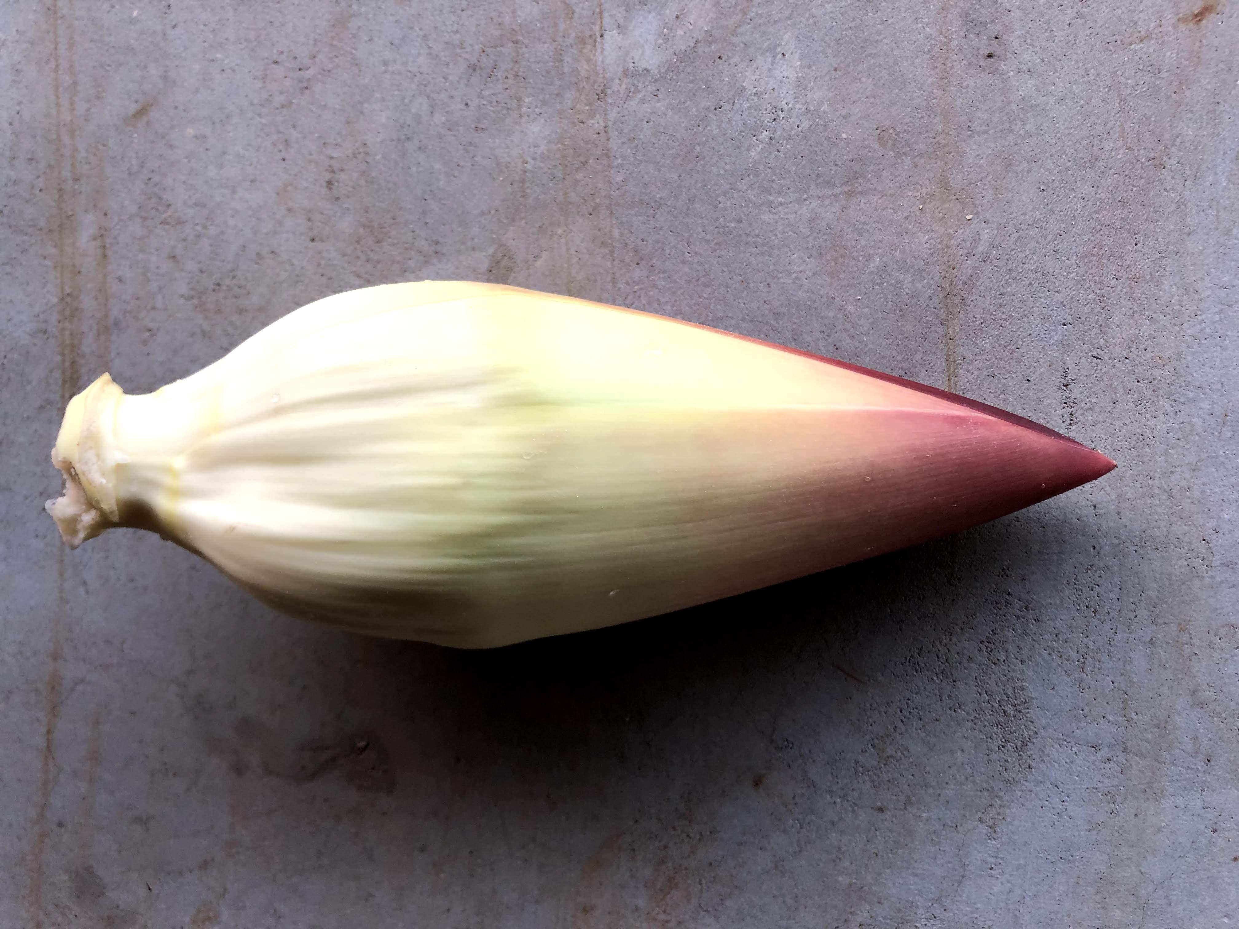 バナナの花を食べてみた