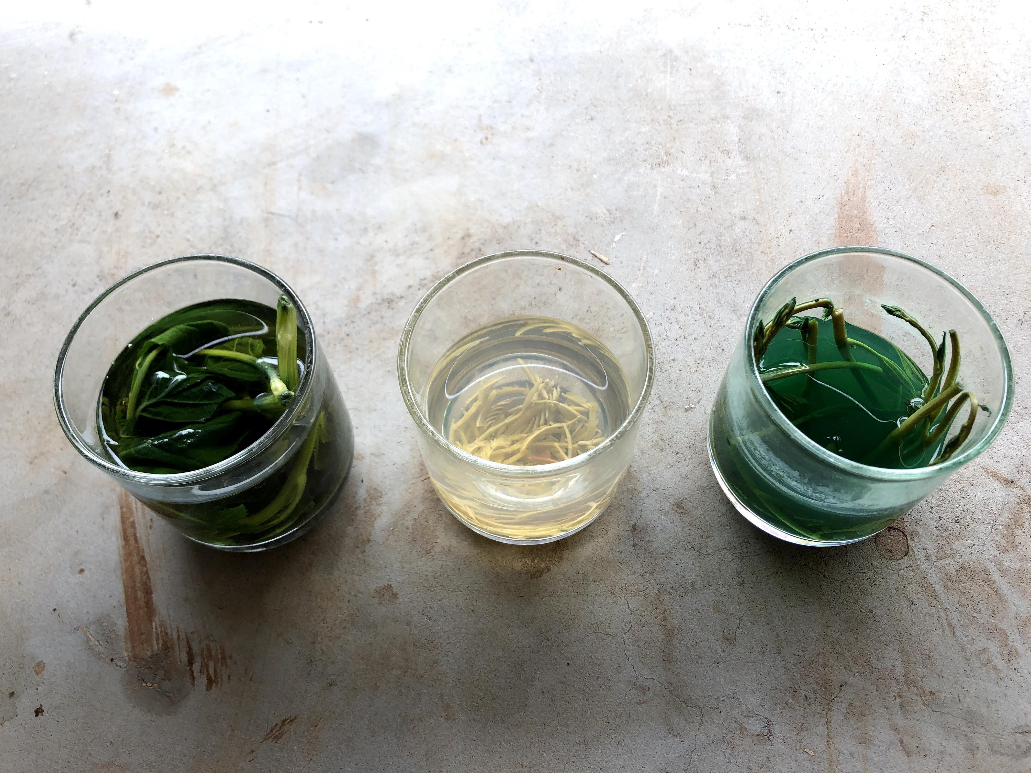 草出汁の実験